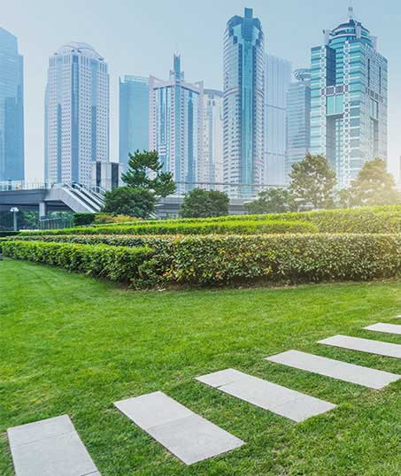 Contact BLH Management for Commercial Landscaping Services